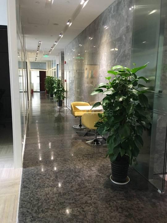 新华保险大厦-租办公室
